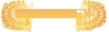 New Web Site Agroimpex Logo